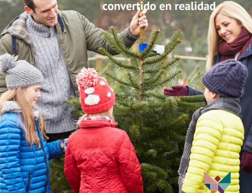"""Recuperemos el """"espíritu de la Navidad"""", el deseo de paz, de armonía y unión familiar"""